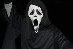 halloween-darkness-clothing-black-headgear-fear-mask-skeleton-costume-masque-horror-film-817514.jpg
